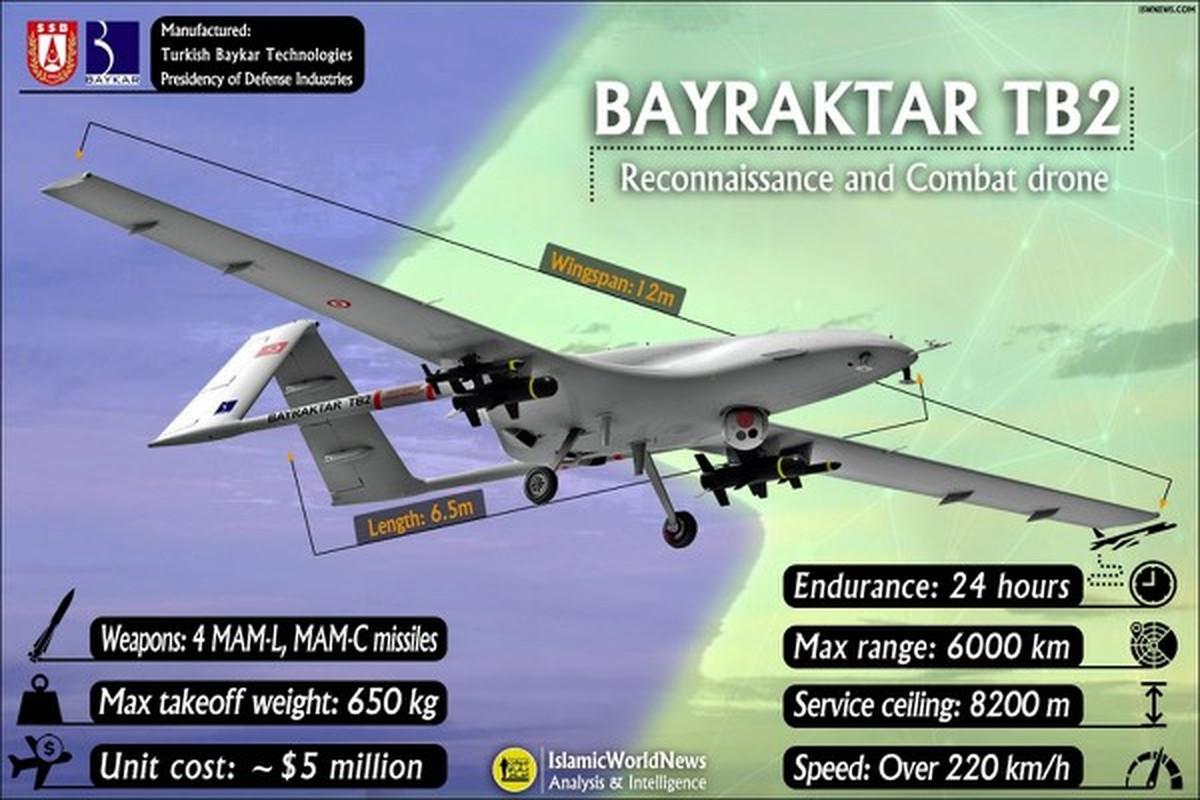 Ukraine muon mua UAV Tho Nhi Ky, Moscow them quan toi bien gioi-Hinh-5