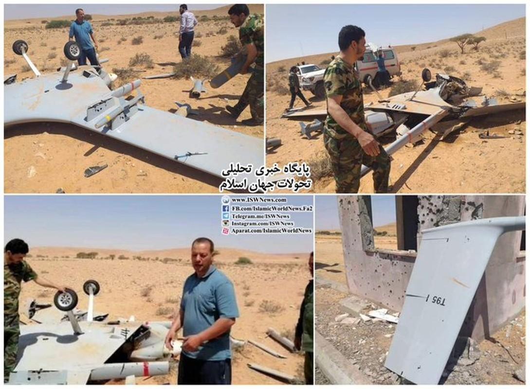 Ukraine mua UAV Tho Nhi Ky; Nga canh bao: Donbass khong phai Armenia-Hinh-16