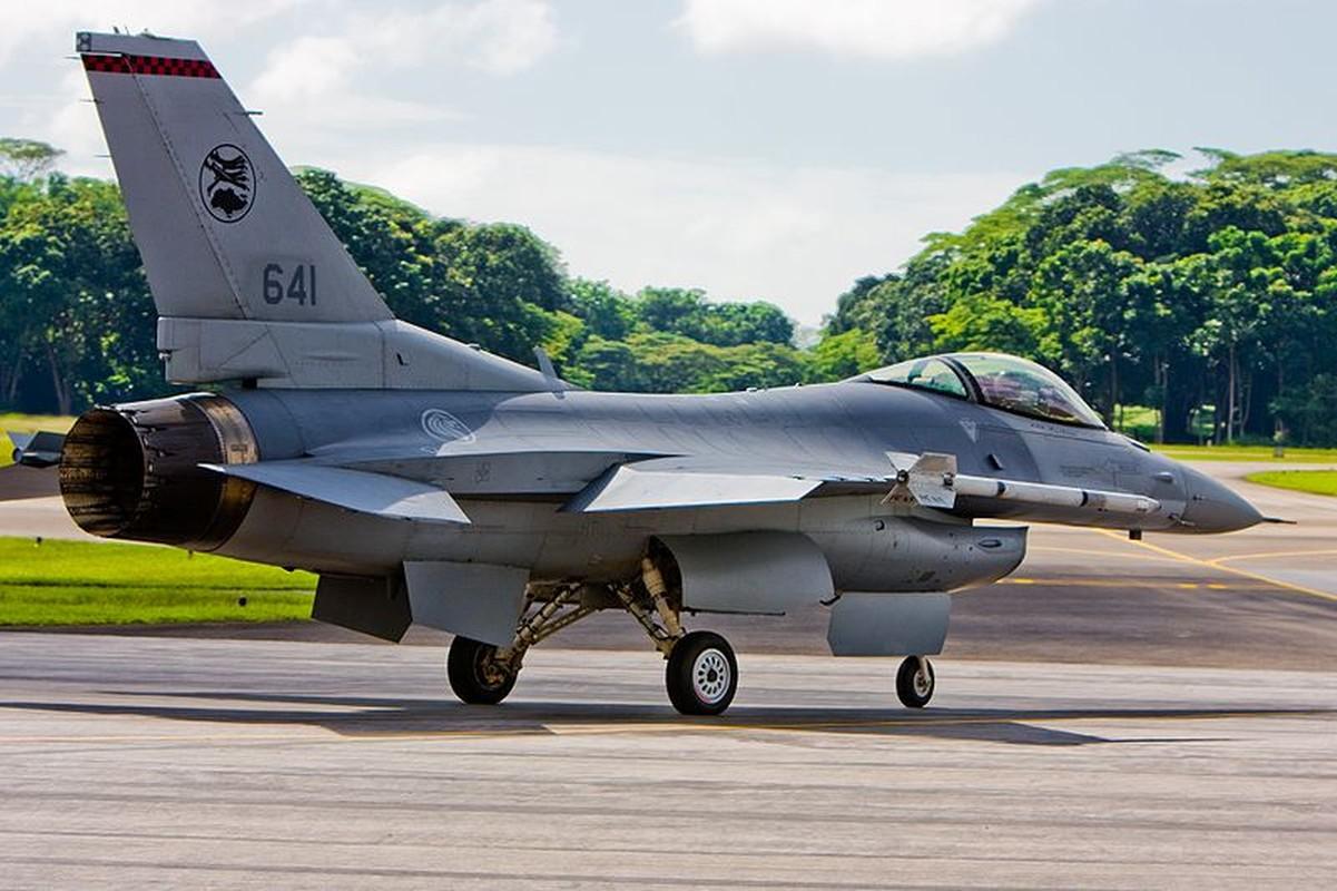 Khong quan Singapore vuot qua hanh trinh gian nan de so huu F-15SG-Hinh-11
