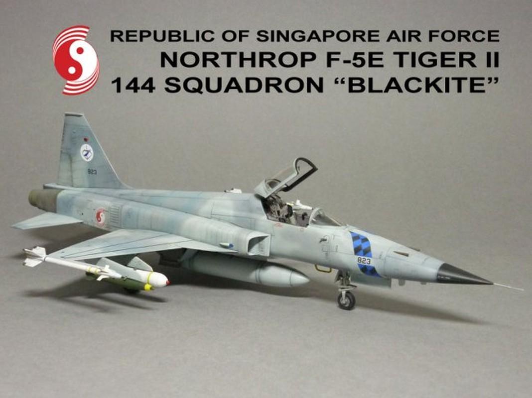 Khong quan Singapore vuot qua hanh trinh gian nan de so huu F-15SG-Hinh-6