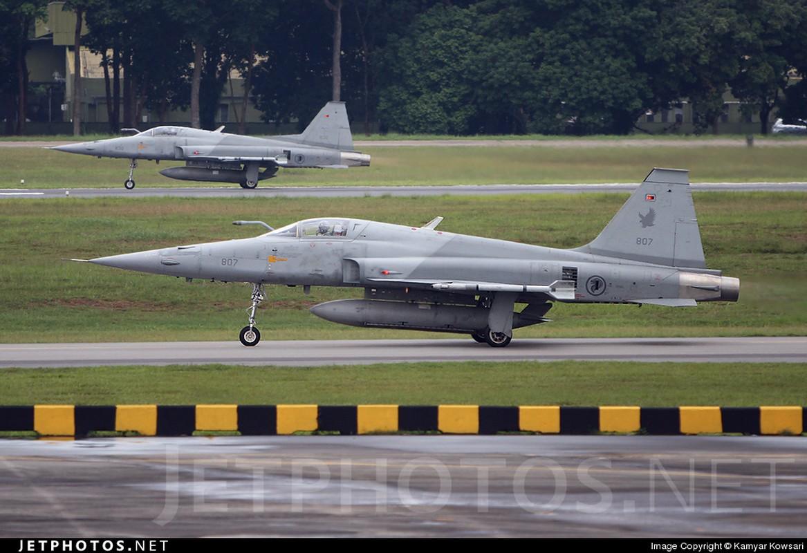 Khong quan Singapore vuot qua hanh trinh gian nan de so huu F-15SG-Hinh-7