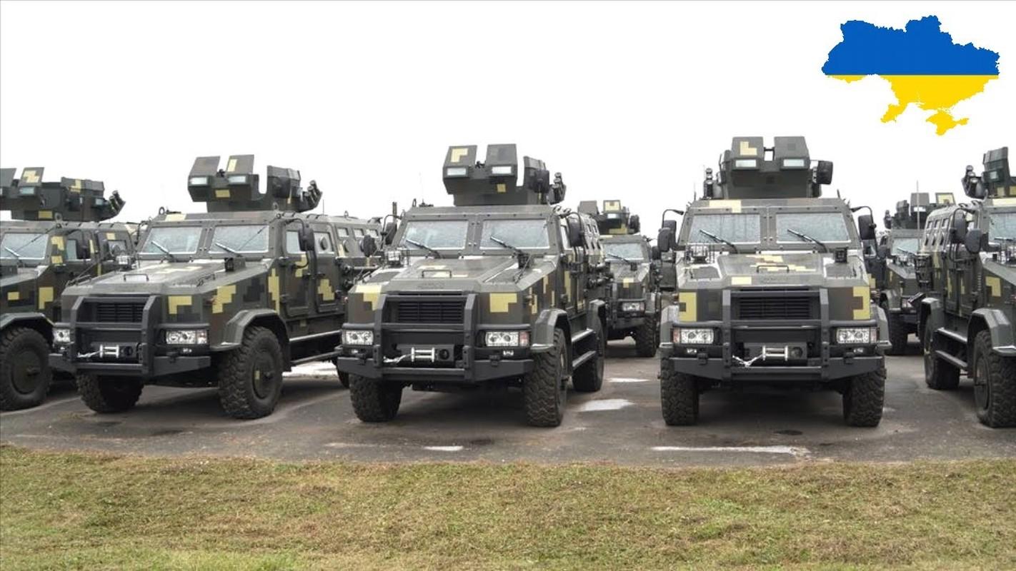 Chuyen gia Ba Lan: Nga hay coi chung suc manh cua quan doi Ukraine-Hinh-7