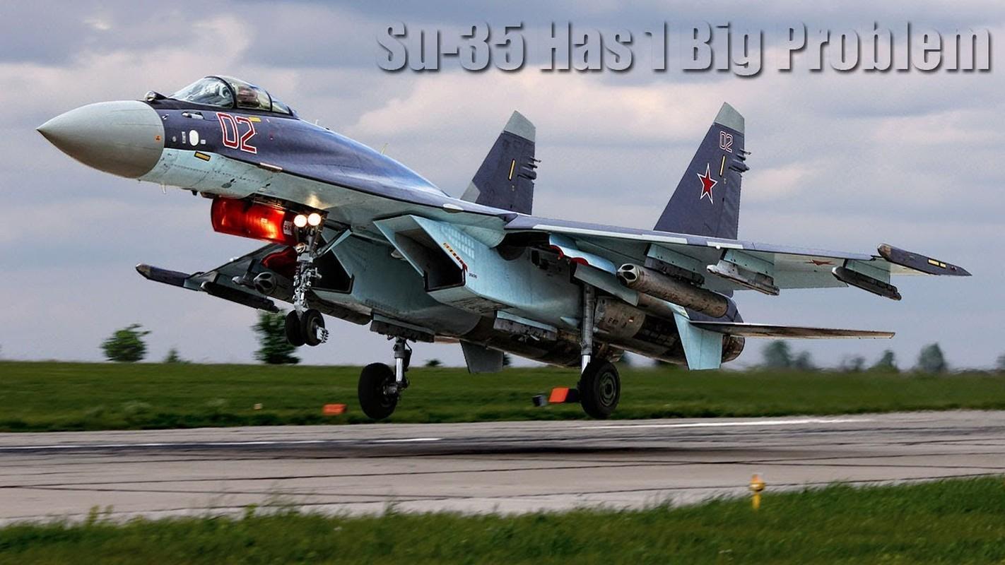 Su-35 co phai la doi thu cua chien dau co tang hinh F-35?-Hinh-5
