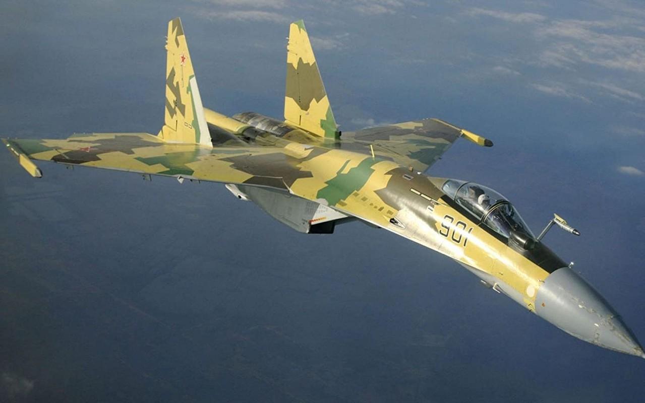 Su-35 co phai la doi thu cua chien dau co tang hinh F-35?-Hinh-6