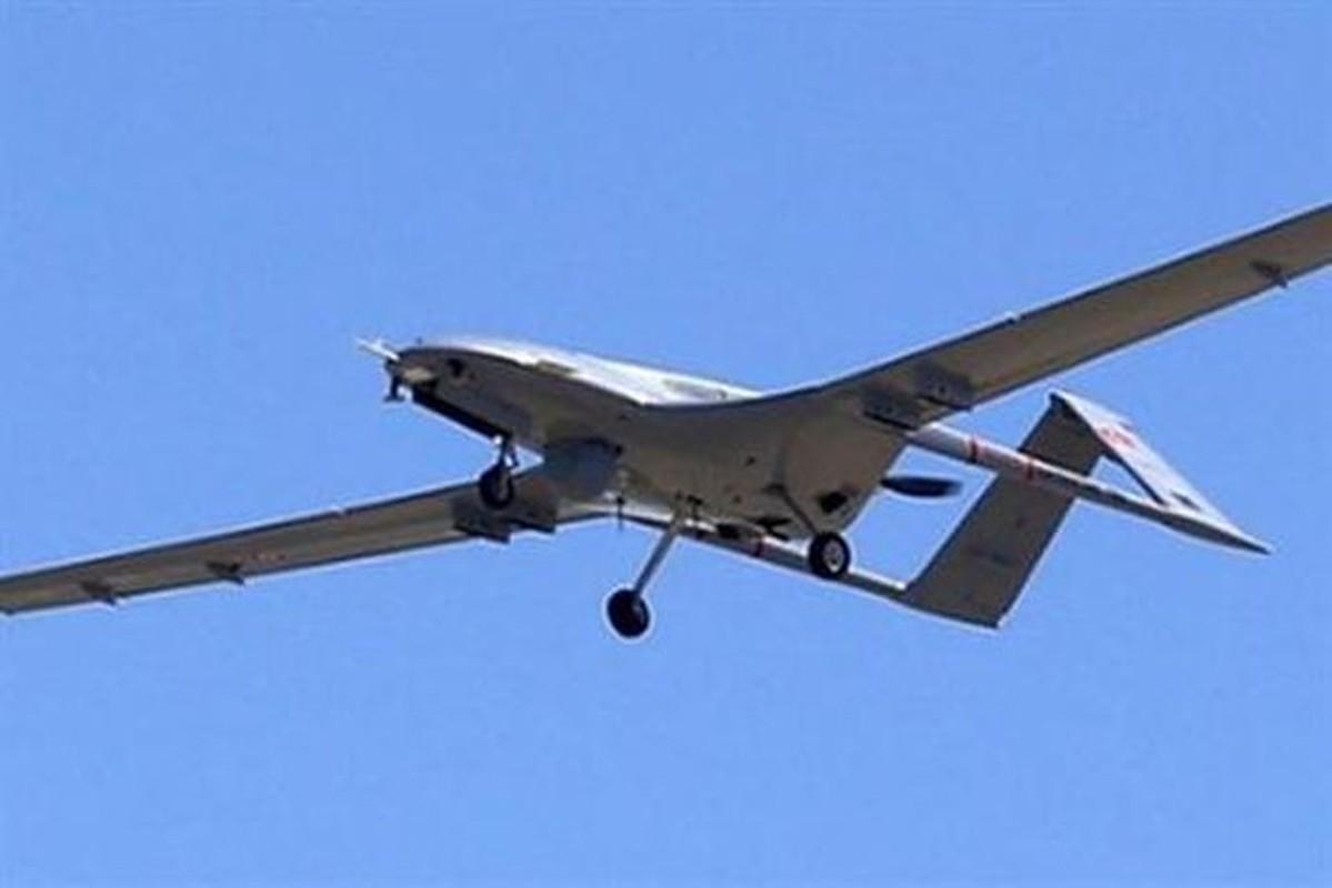 """UAV TB2, vu khi xuat khau """"dat nhu tom tuoi"""" cua Tho Nhi Ky-Hinh-15"""