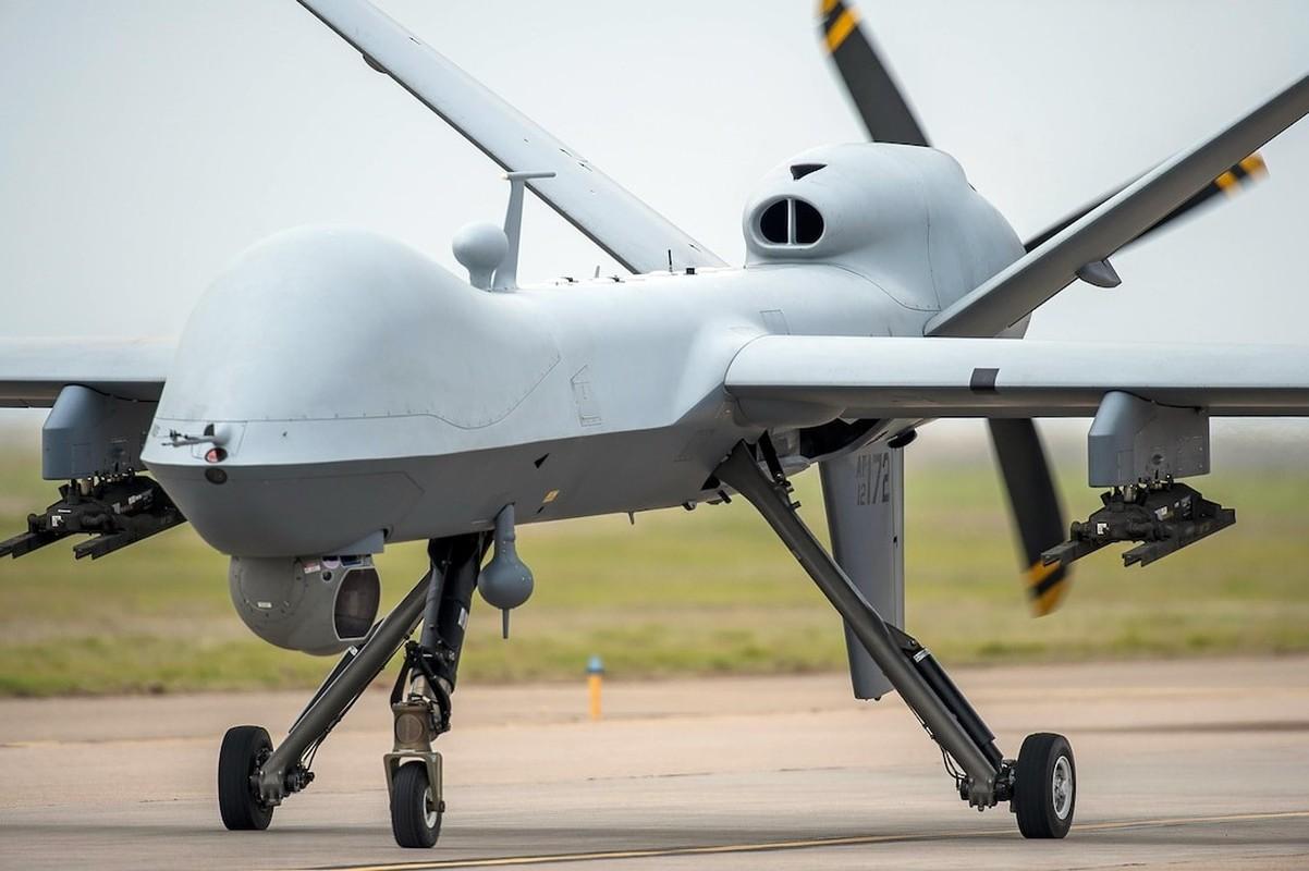 Qua lo so Trung Quoc, My loai bien som 20 UAV Global Hawk-Hinh-4