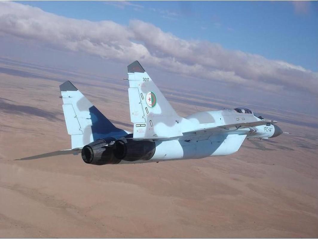Tai sao Algeria tu choi may bay Rafale cua Phap va uu tien Su-30MKA?-Hinh-9