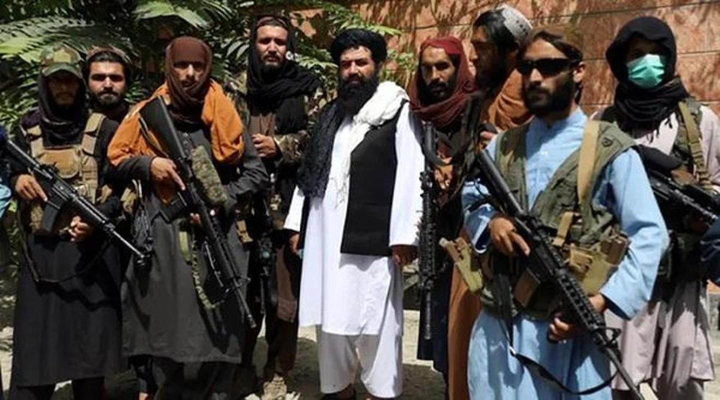 Chinh xac luc luong Taliban da thu bao duoc nhieu vu khi cua My?-Hinh-7