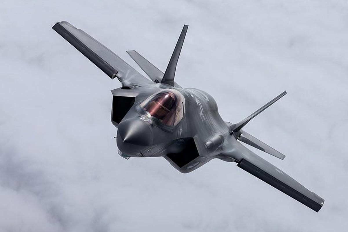 Thuong vu ty do mua tiem kich F-35 cua Thuy Si co nguy co do be-Hinh-5