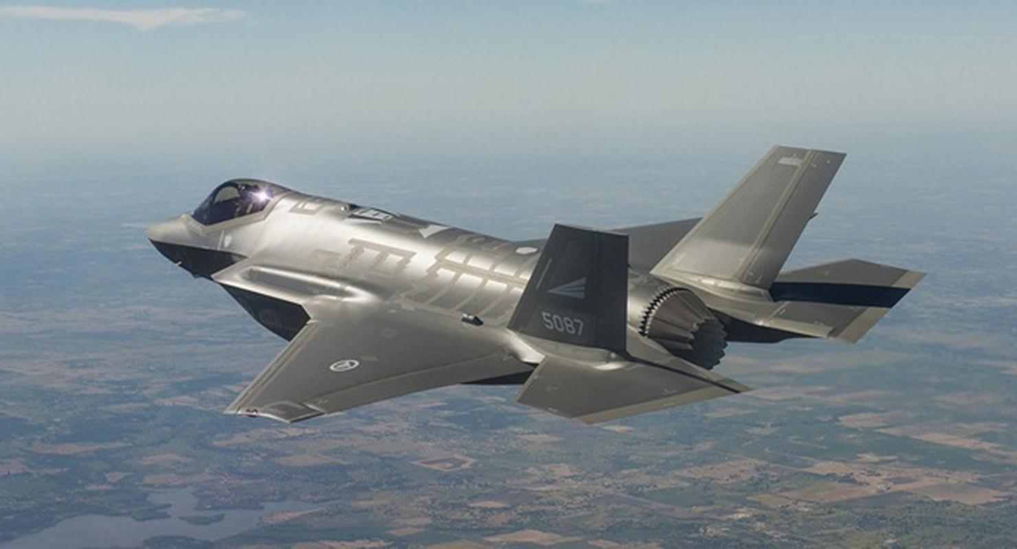 Thuong vu ty do mua tiem kich F-35 cua Thuy Si co nguy co do be-Hinh-8