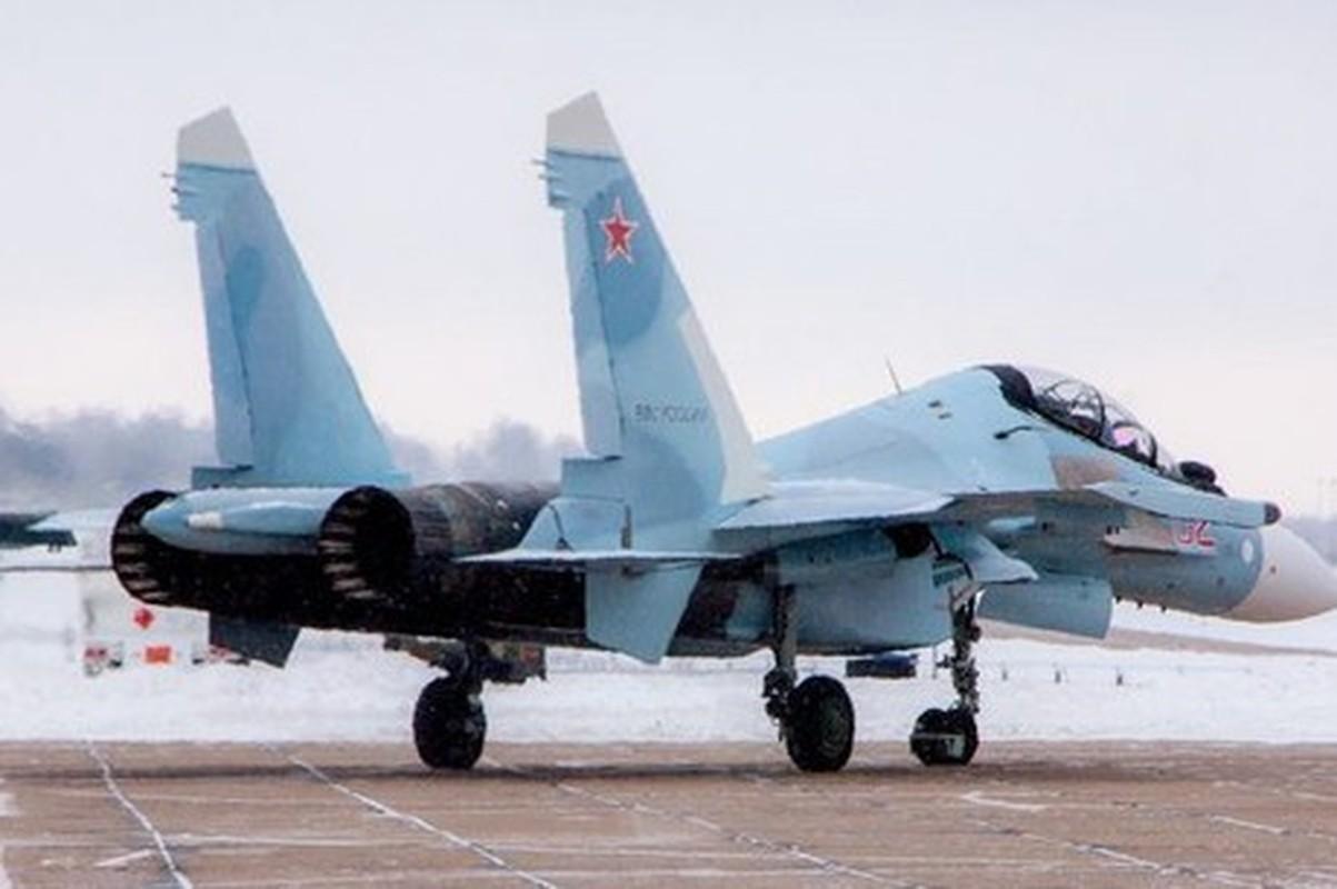 Tiem kich Su-30SM tro thanh chien dau co chu luc tiep theo cua Belarus?-Hinh-11