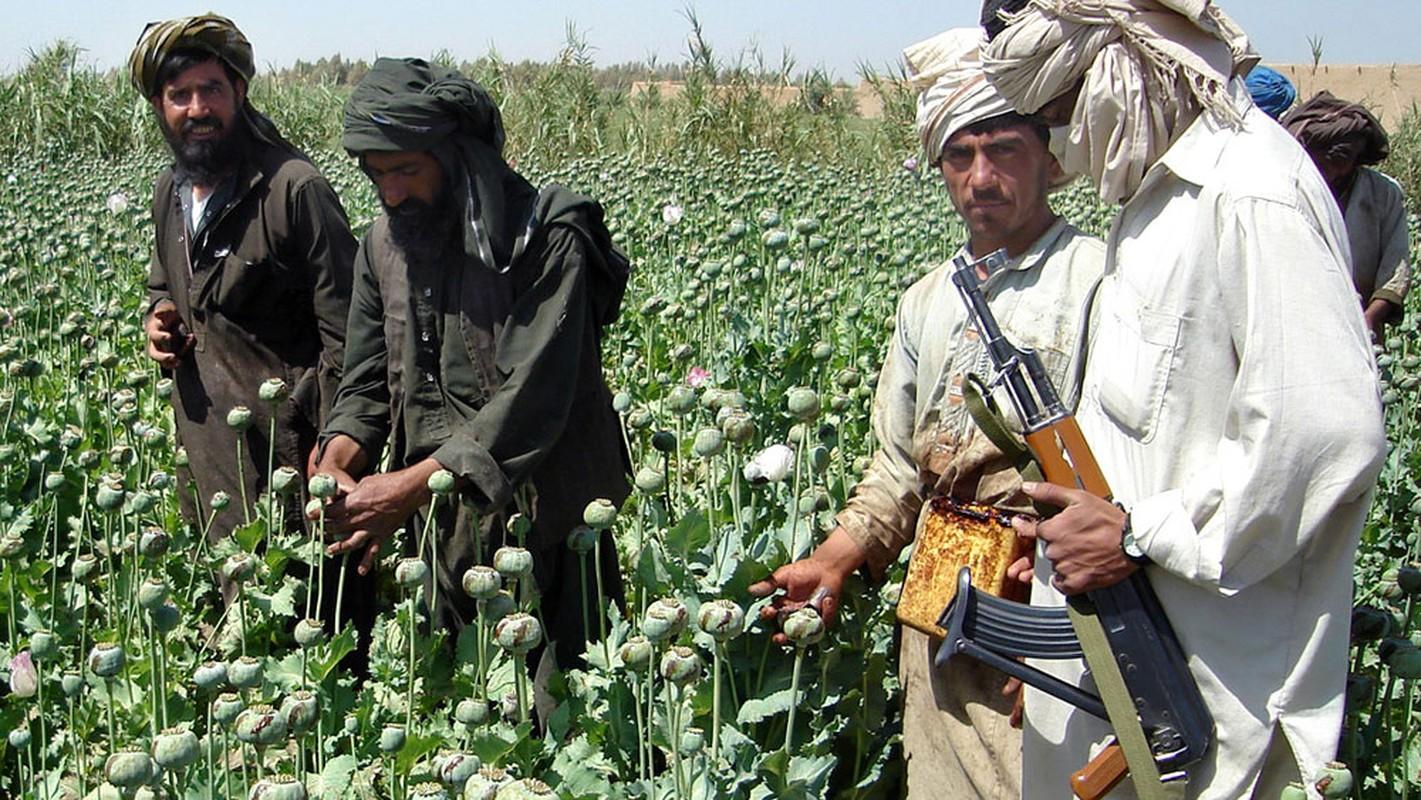 Vua nam quyen, Taliban phai doi mat voi ke thu truyen kiep ISIS-K-Hinh-13