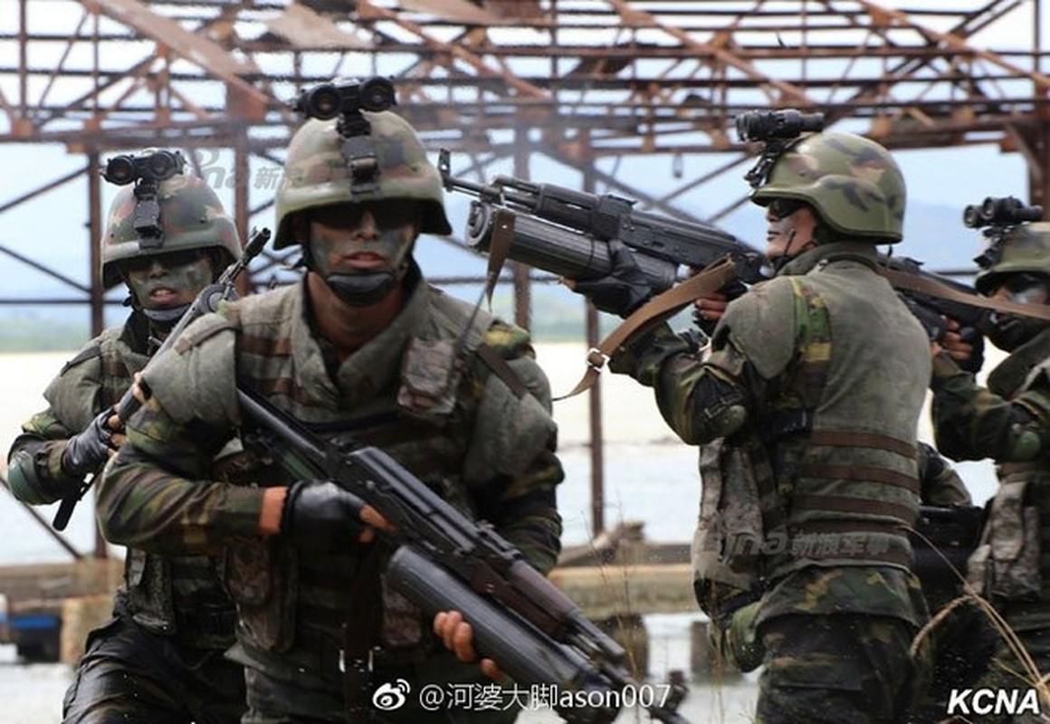 Luc luong dac biet Trieu Tien tung tung hoanh ra sao o Syria?-Hinh-10