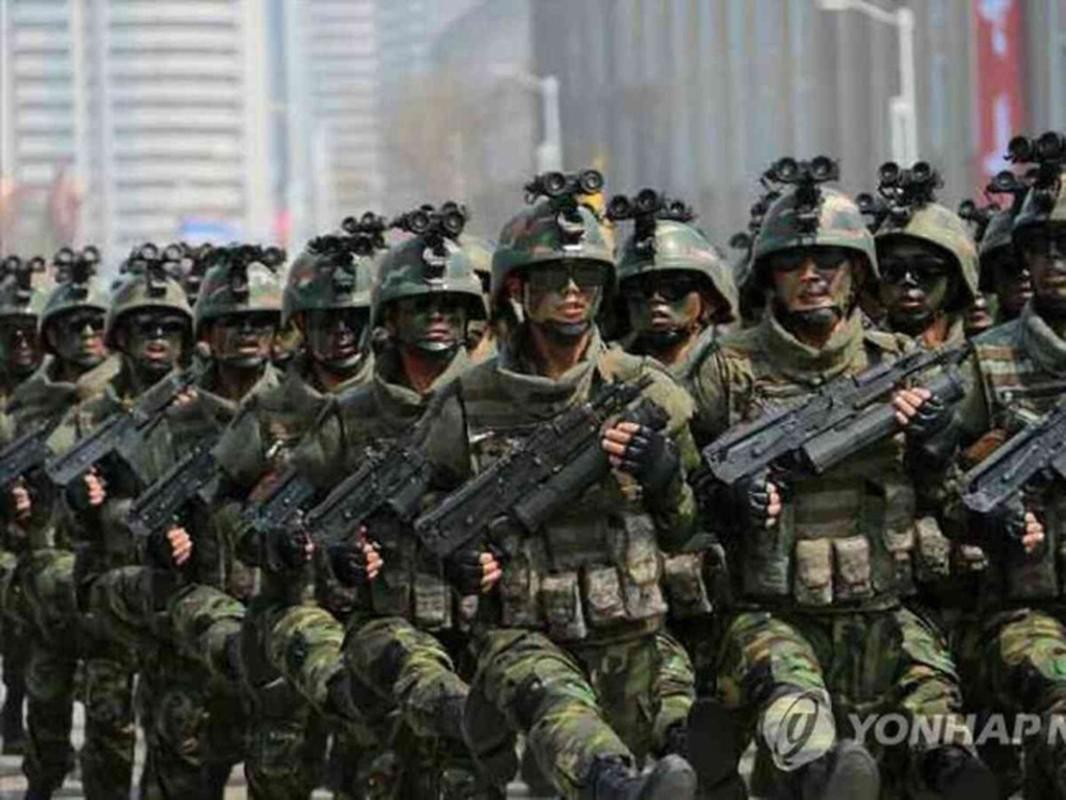 Luc luong dac biet Trieu Tien tung tung hoanh ra sao o Syria?-Hinh-7