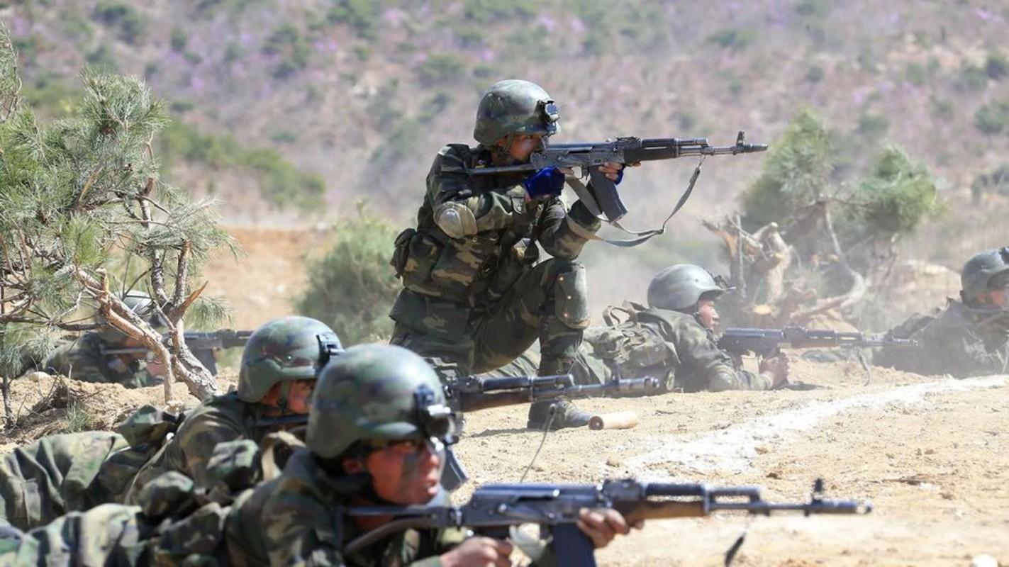 Luc luong dac biet Trieu Tien tung tung hoanh ra sao o Syria?-Hinh-8