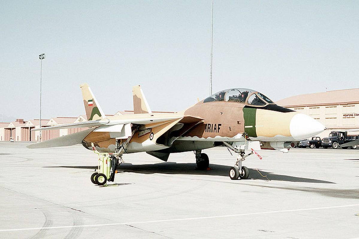My va dong minh phat hoang khi F-14 Iran lot xac voi ten lua moi-Hinh-4