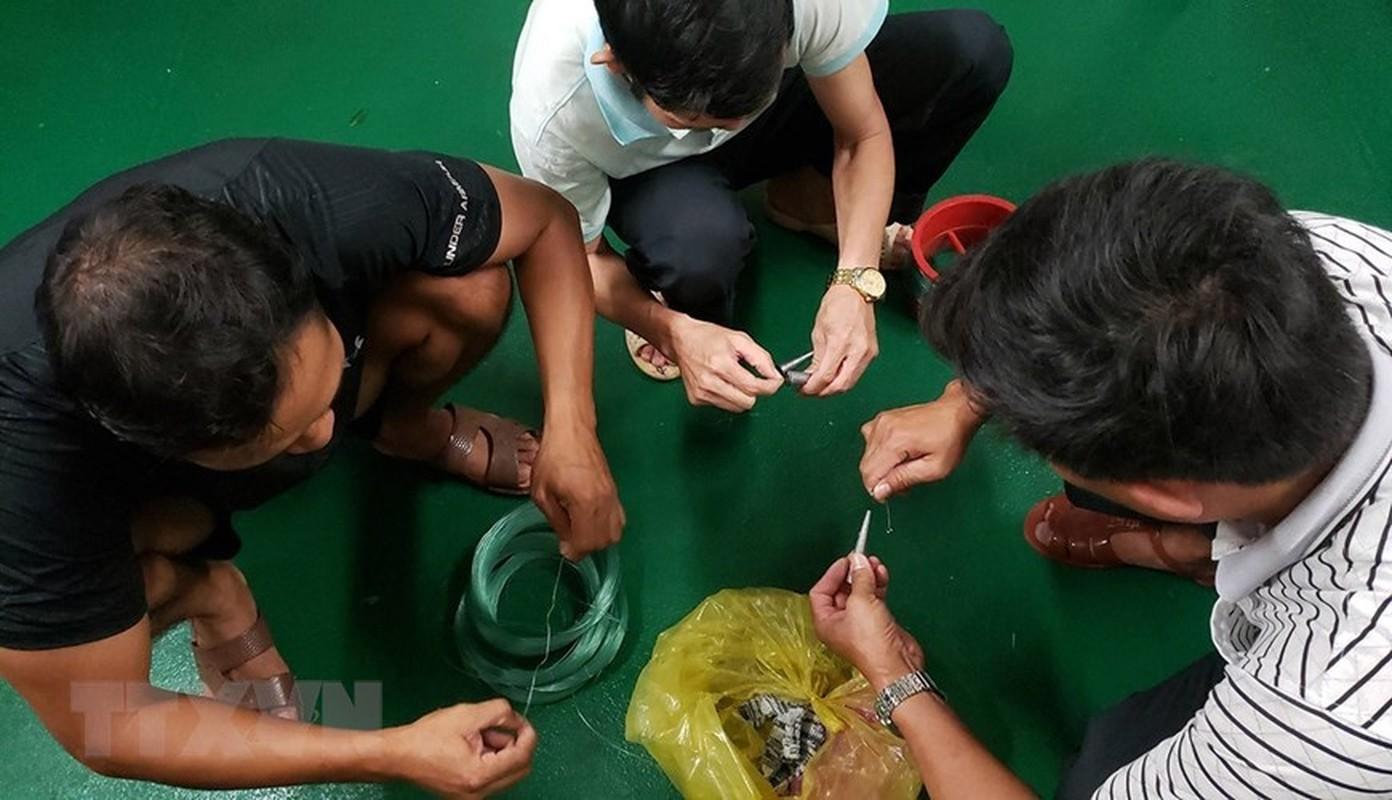 Trai nghiem thu vi khi san ca dem tren bien Truong Sa-Hinh-14