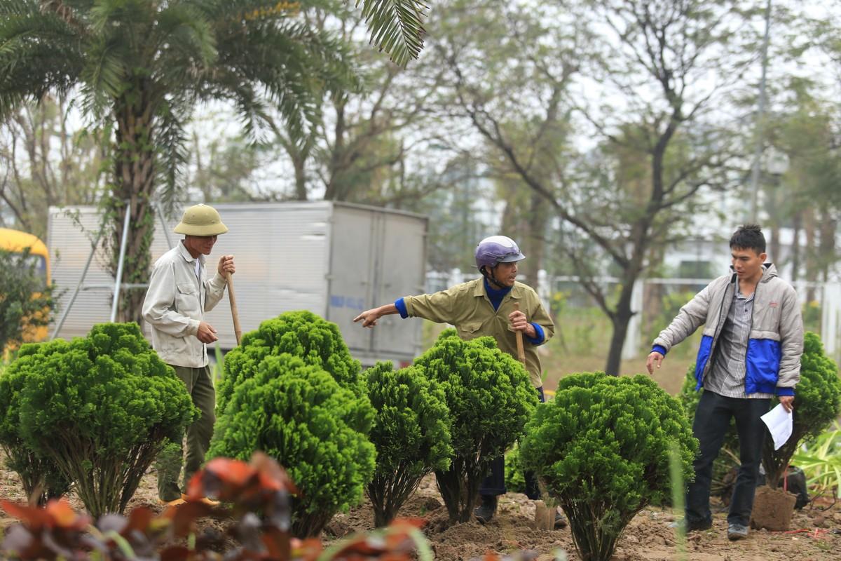 Ha Noi: Rop co hoa chao don Hoi nghi Thuong dinh My-Trieu-Hinh-7