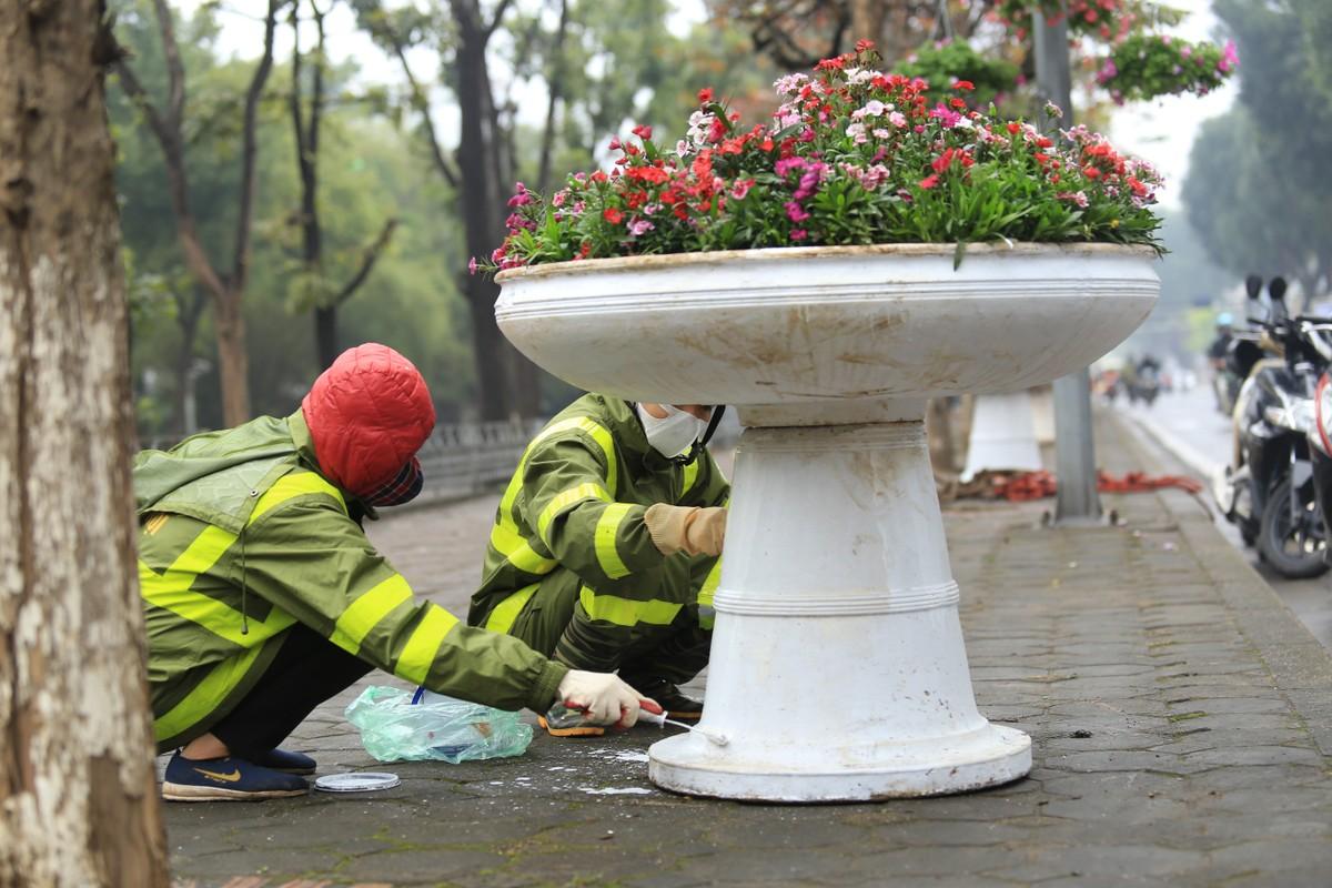 Ha Noi: Rop co hoa chao don Hoi nghi Thuong dinh My-Trieu-Hinh-9