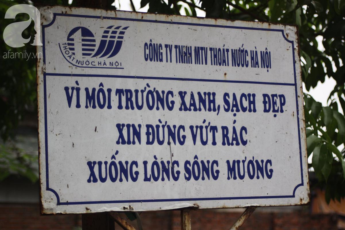 Ha Noi: Nui rac khong lo hoi thoi nong nac duoi chan cau Long Bien-Hinh-9