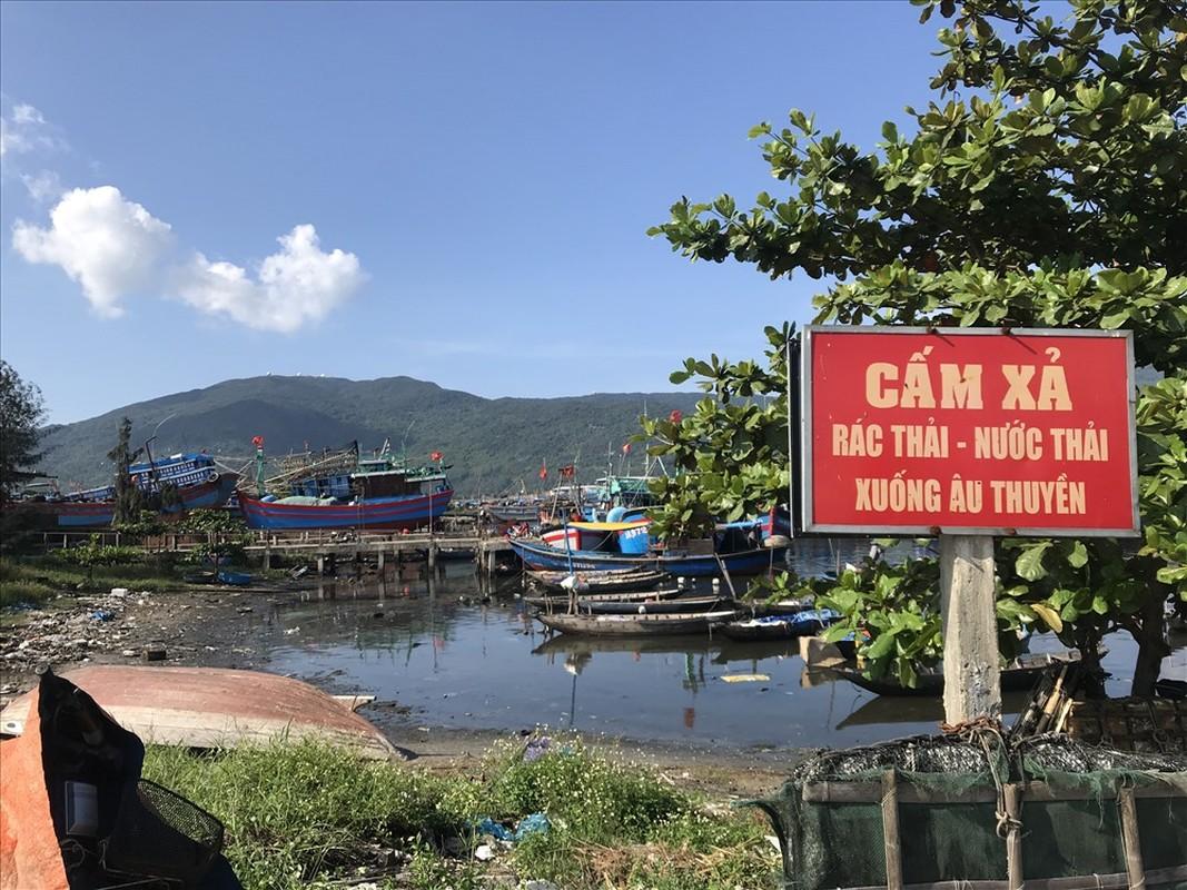 Au thuyen lon nhat Da Nang bi rac thai bua vay-Hinh-8