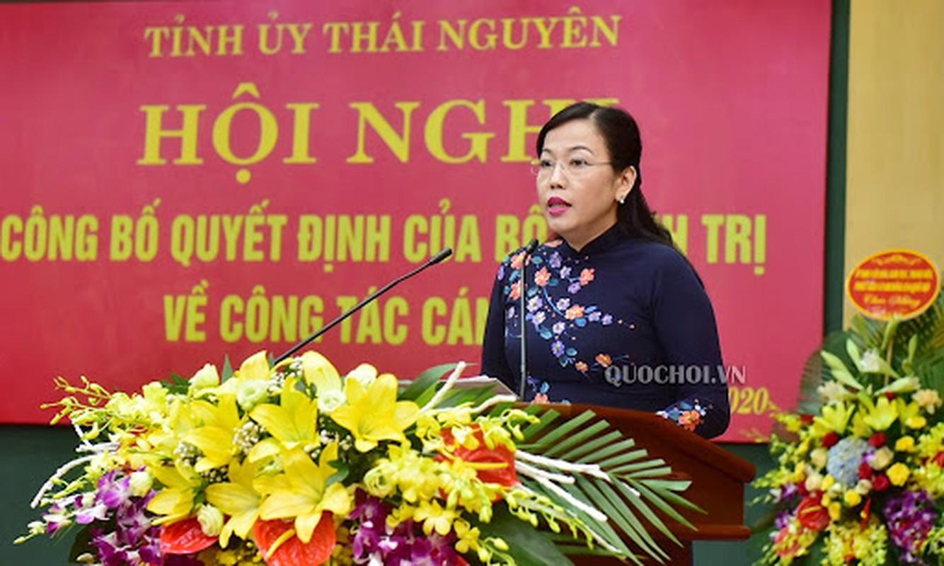Chan dung 15 Bi thu tinh, thanh vua duoc Bo Chinh tri bo nhiem-Hinh-7