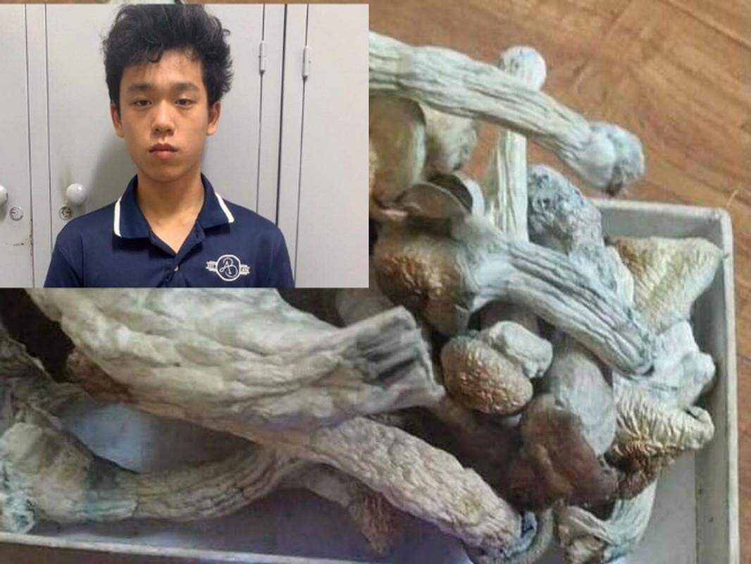 Tin nong ngay 14/6: Tiep tuc khoi to nguyen pho chu tich TP HCM va bong hong dai gia-Hinh-9