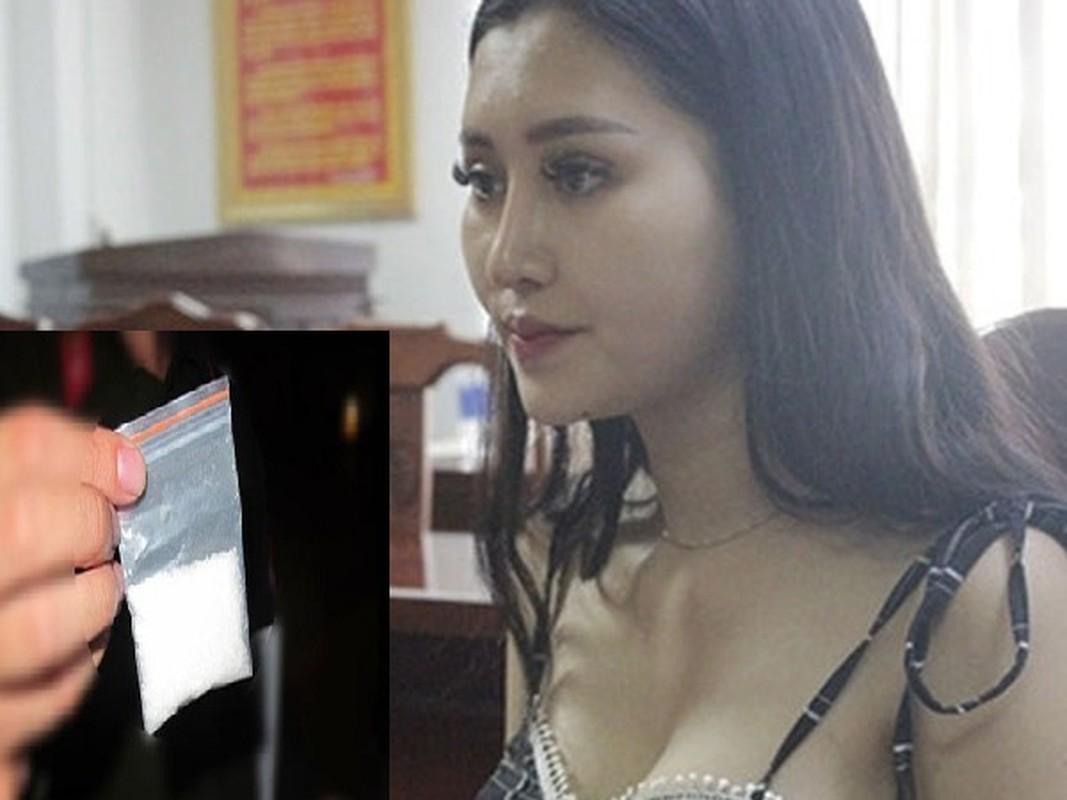 Hotgirl sinh vien buon ma tuy: Bi mat trong nhung goi qua-Hinh-8