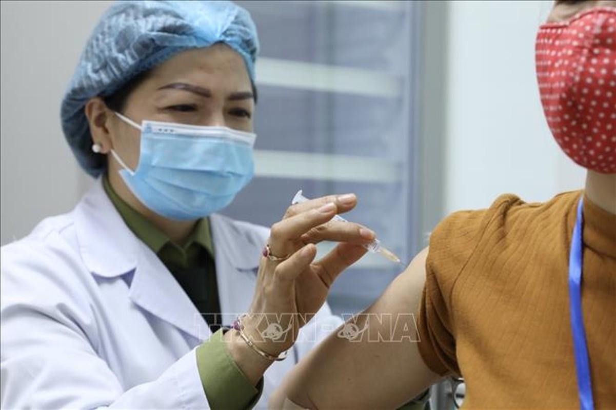 Hinh anh Pho Thu tuong Vu Duc Dam tiem thu nghiem vac-xin phong COVID-19-Hinh-6
