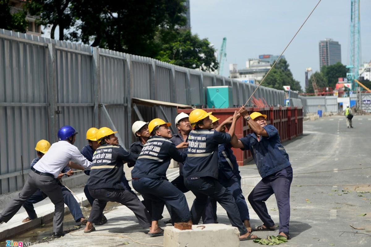 Anh: Don hang dau tren 50 nam tuoi o trung tam Sai Gon-Hinh-6