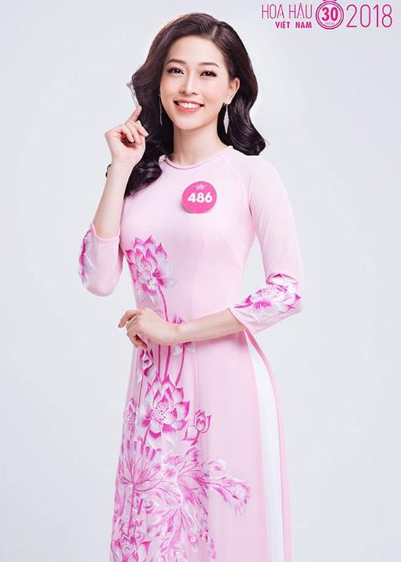 Nhan sac me dam cua ban sao Jennifer Pham tai Hoa hau Viet Nam 2018