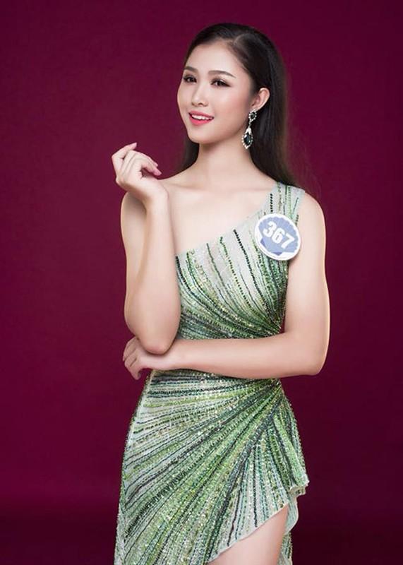 Ve goi cam cua co gai tung phu ho thi Hoa hau Viet Nam 2018-Hinh-5