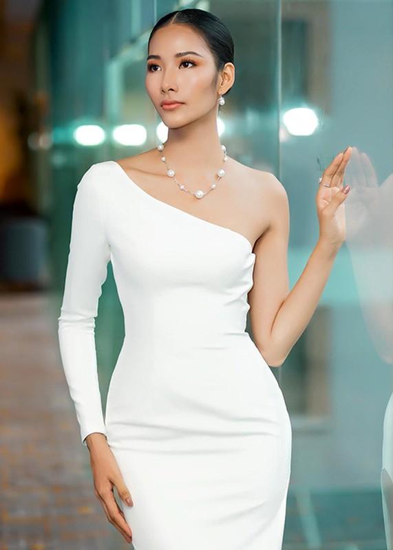 Hoang Thuy co xung dang tiep noi H'hen Nie thi Miss Universe 2019?-Hinh-8