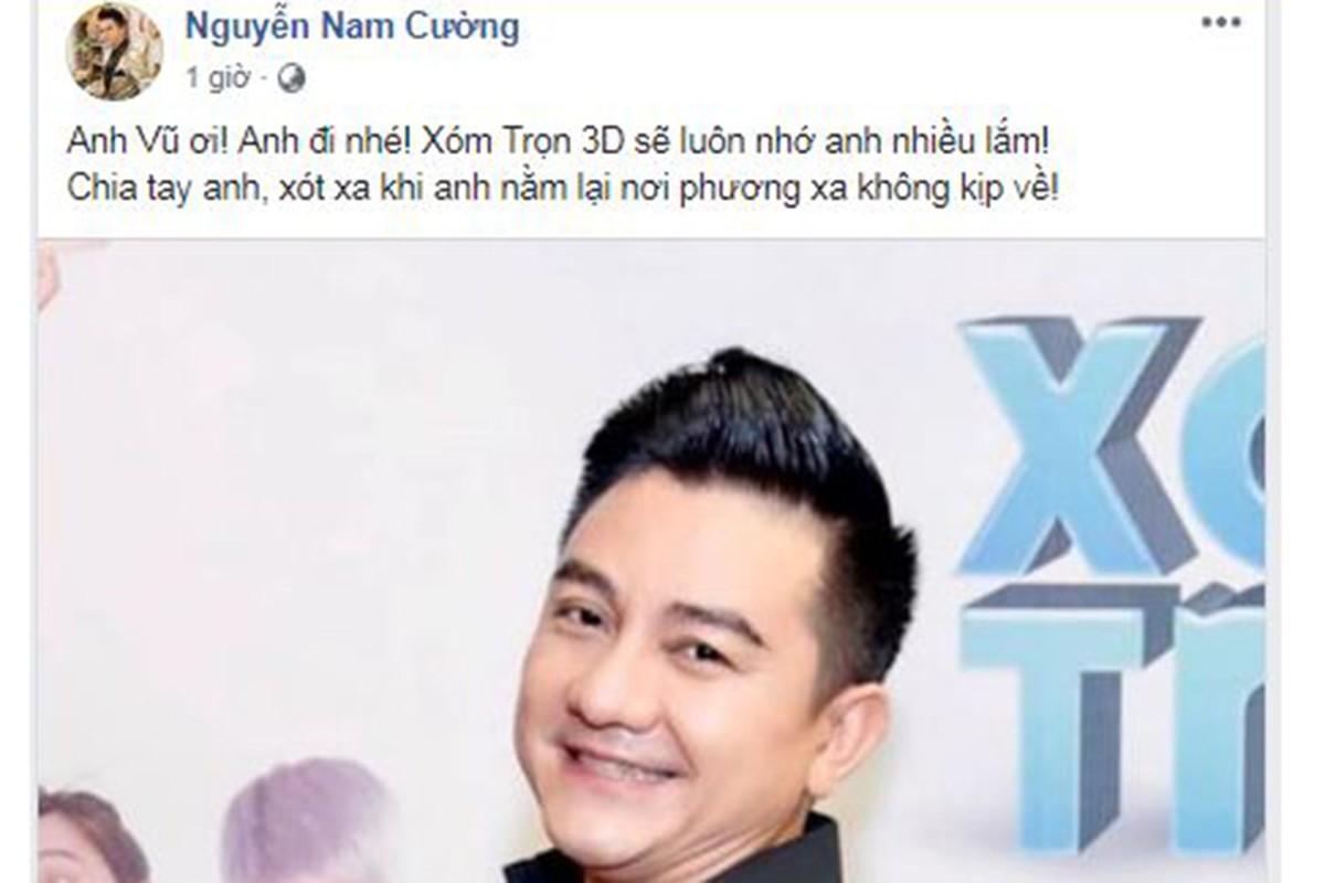Sao Viet tiec thuong dien vien hai Anh Vu qua doi o tuoi 47-Hinh-12