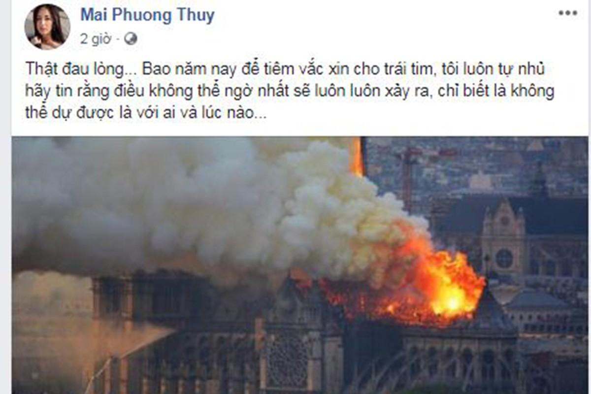 Vu chay Nha tho Duc Ba Paris: Sao Viet dau xot, cau nguyen-Hinh-12