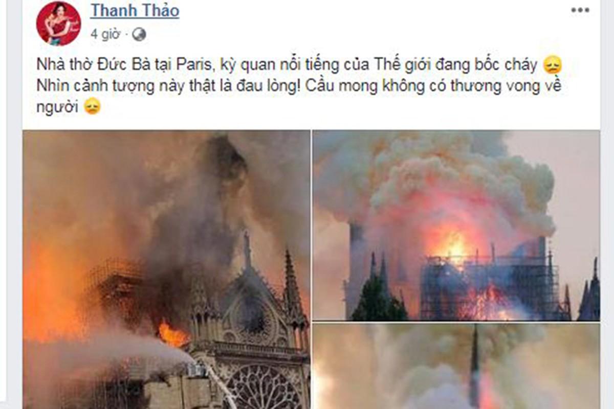 Vu chay Nha tho Duc Ba Paris: Sao Viet dau xot, cau nguyen-Hinh-5