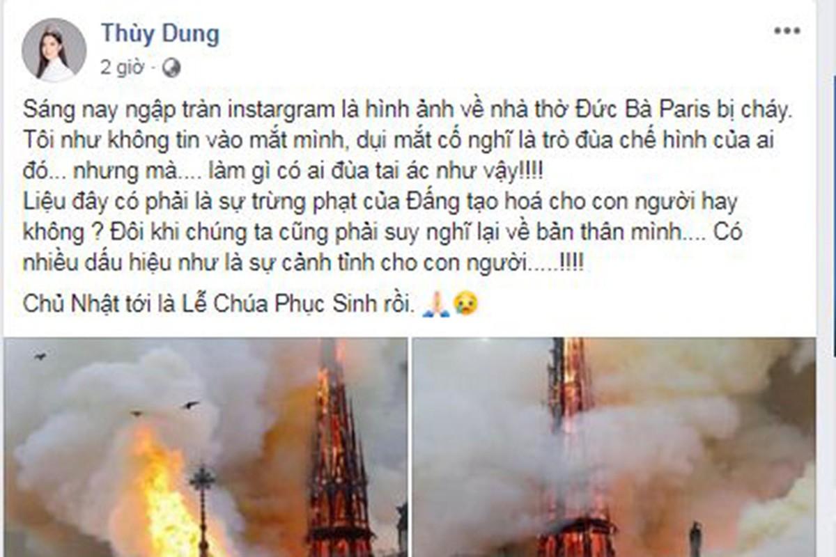 Vu chay Nha tho Duc Ba Paris: Sao Viet dau xot, cau nguyen-Hinh-9
