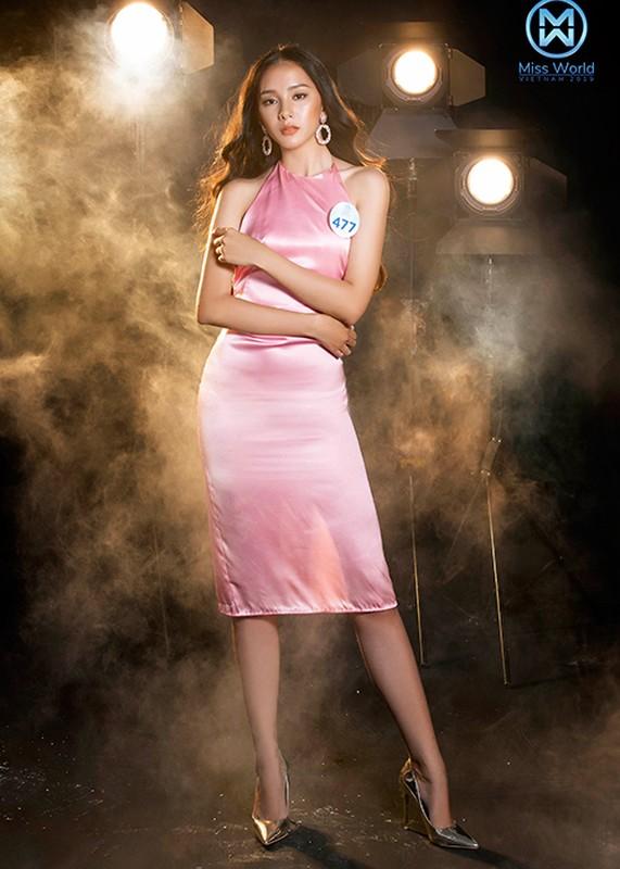 Thi sinh phia Bac Miss World Viet Nam goi cam bat ngo-Hinh-2