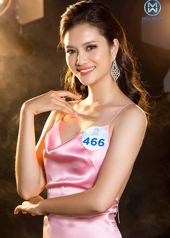 Thi sinh phia Bac Miss World Viet Nam goi cam bat ngo-Hinh-5