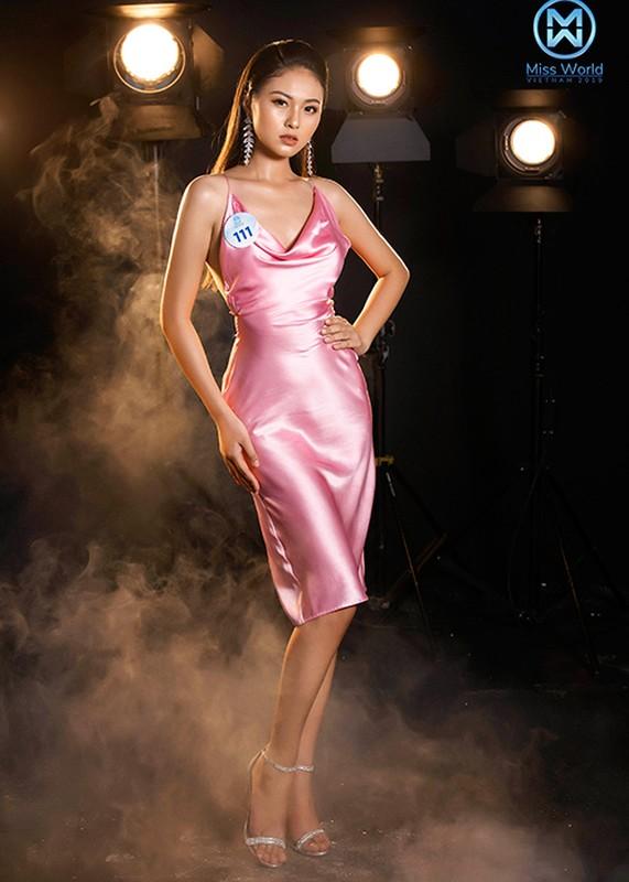Thi sinh phia Bac Miss World Viet Nam goi cam bat ngo-Hinh-6