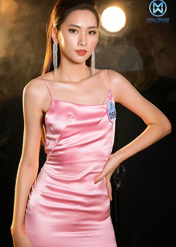 Thi sinh phia Bac Miss World Viet Nam goi cam bat ngo-Hinh-8