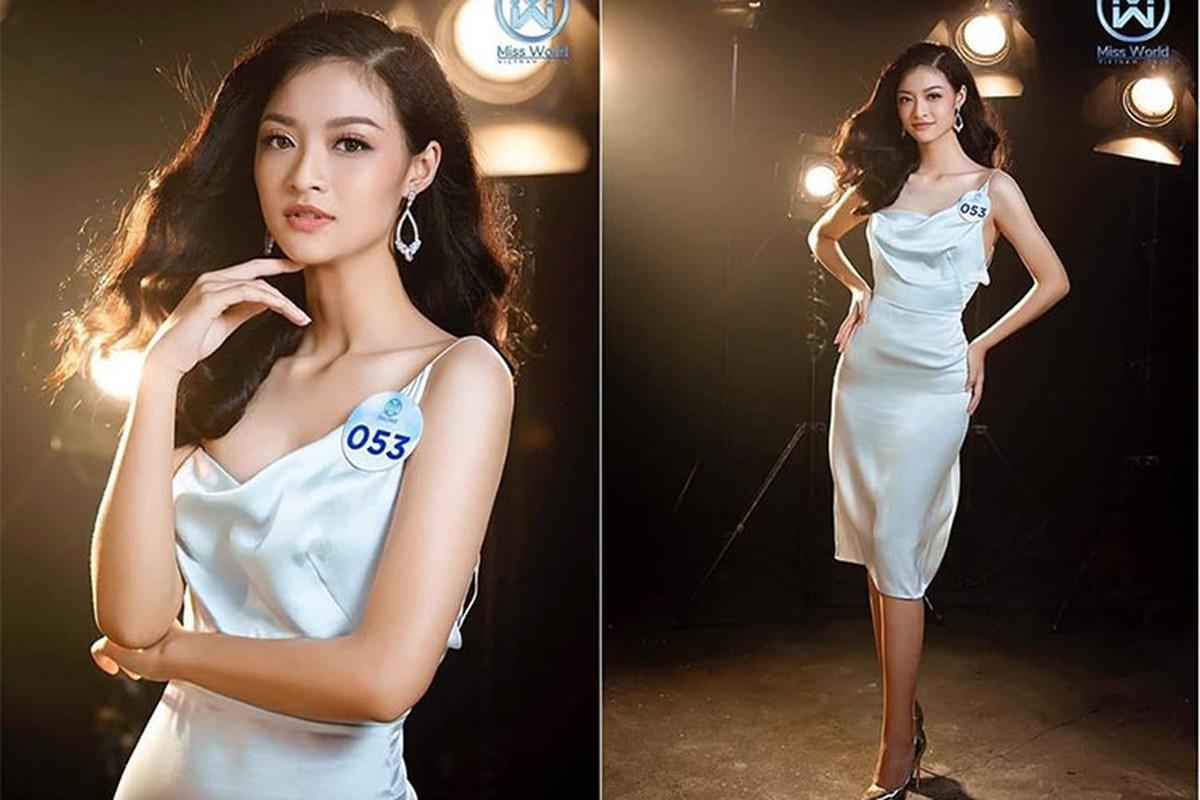Nhan sac 10x gay tranh cai khi doat a hau 1 Miss World Viet Nam-Hinh-6