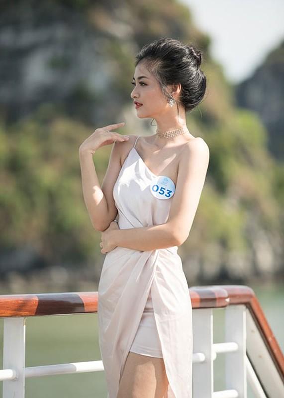 Nhan sac 10x gay tranh cai khi doat a hau 1 Miss World Viet Nam-Hinh-7