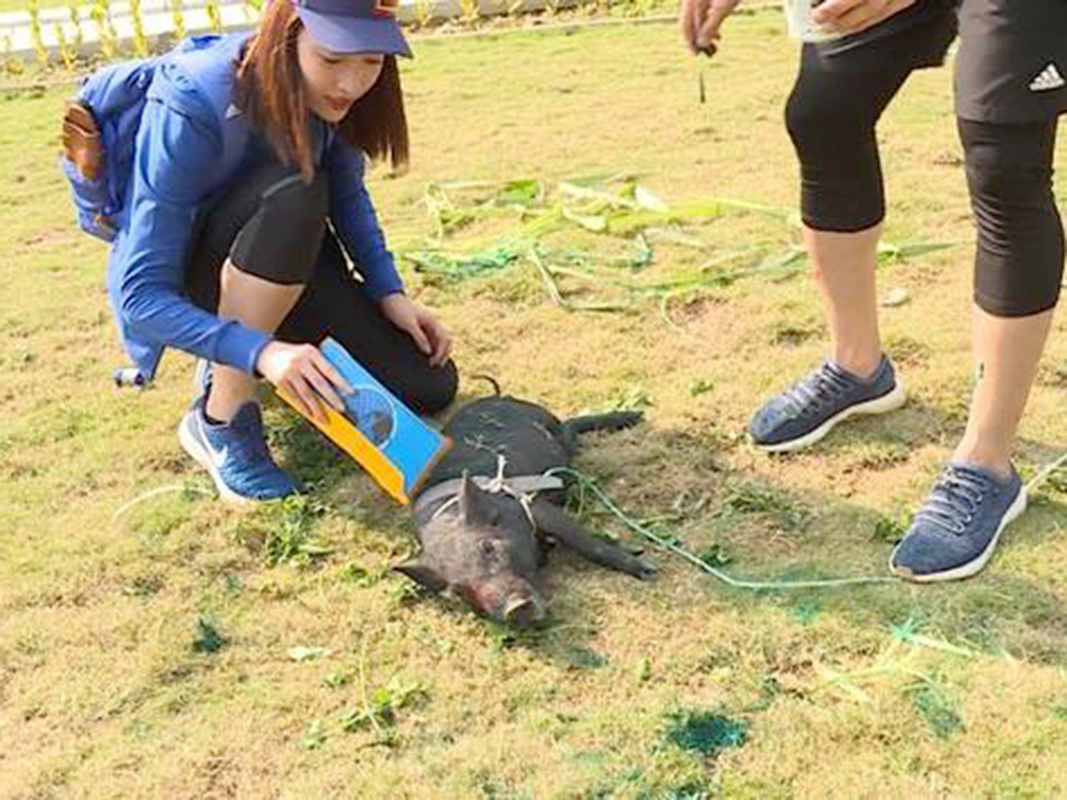 Nang hoa hau bi gameshow dim tham hai nhat nam 2019 la ai?-Hinh-3