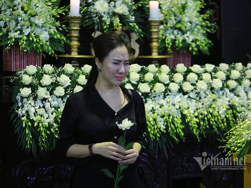 Gia dinh, dong nghiep dau xot tien dua MC Dieu Linh-Hinh-5
