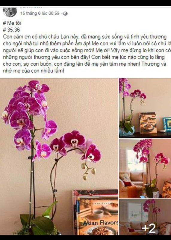 Me qua doi, Kim Hien dau xot khong the ve Viet Nam vi COVID-19-Hinh-7