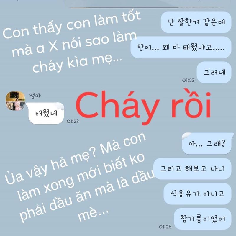 Me Hari Won thay toi loi voi Tran Thanh vi 'khong biet day con'-Hinh-3