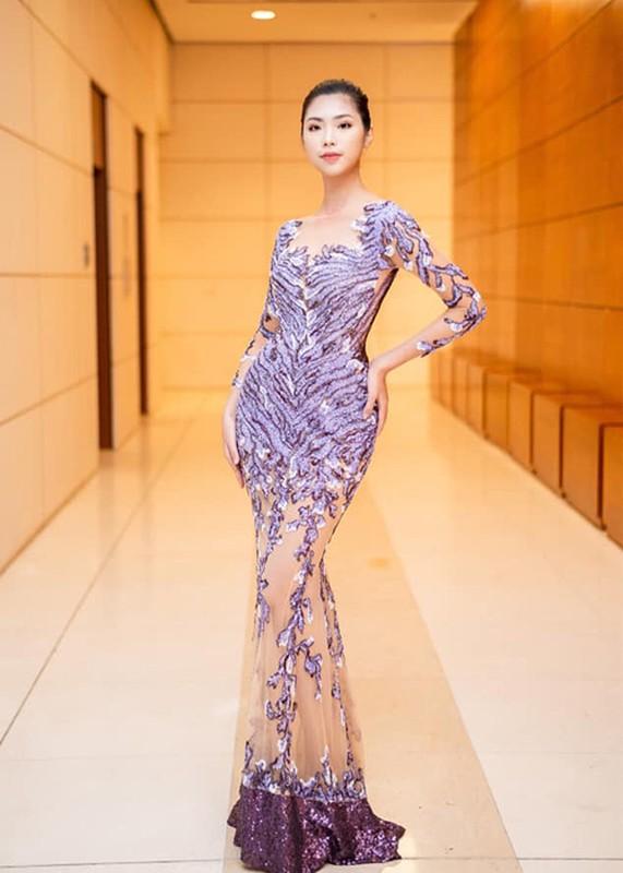 Chan dung thi sinh mac tao bao nhat Hoa hau Viet Nam 2020-Hinh-12