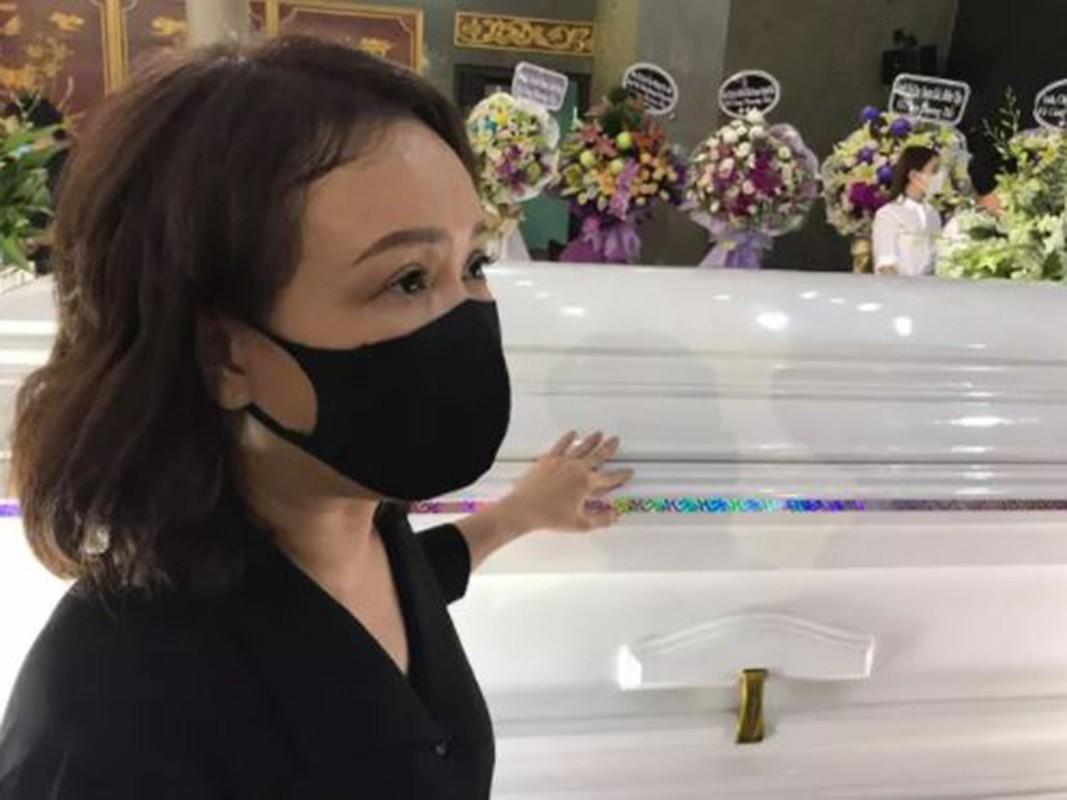 Truong Giang suy sup trong tang le nghe si Chi Tai-Hinh-12