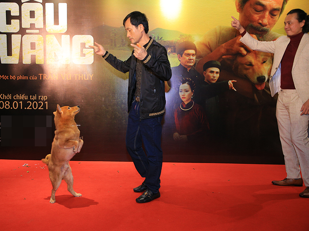Cau Vang trinh dien ngoan muc tren tham do ra mat phim